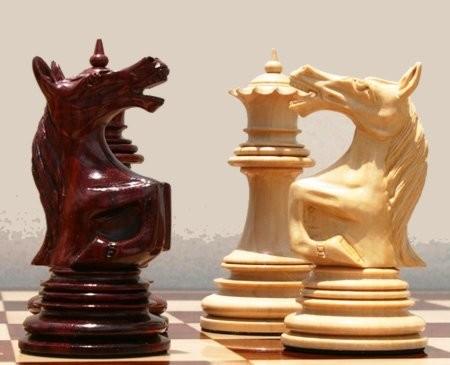 Мультимедиа шахматы для детей и не только (2002) PC