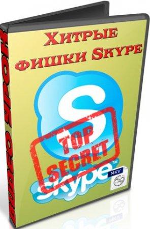 Хитрые фишки Skype (2012/ DVDRip)