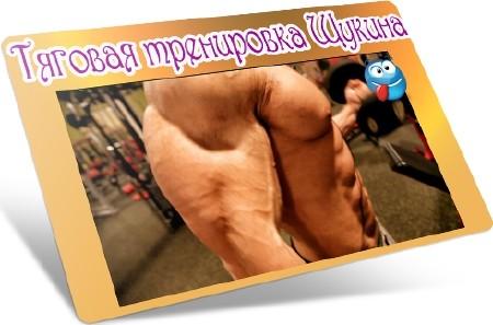 Тяговая тренировка Щукина (2012) DVDRip
