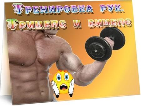 Тренировка рук. Трицепс и бицепс (2012) DVDRip