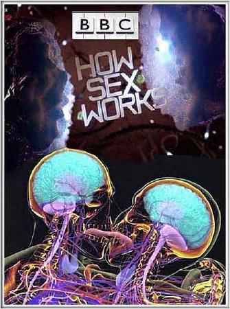 ВВС: Как действует секс (2 и 3 серии) / ВВС: How Sex Works (2012) SATRip