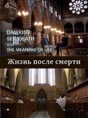 Секс, смерть и смысл жизни: Жизнь после смерти / Sex, Death and Meaning of Life: Life after Death (2012) SATRip
