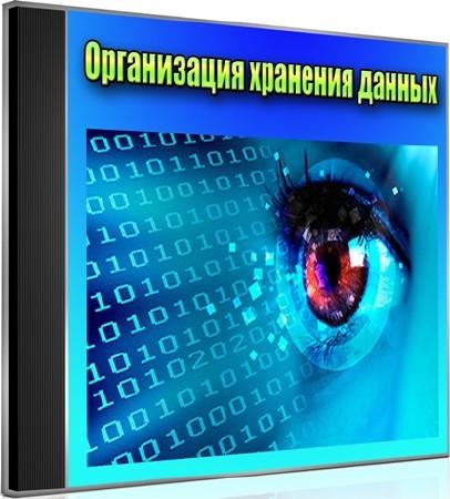 Организация хранения данных (2012) DVDRip