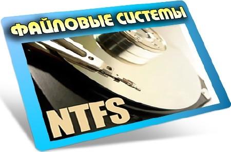 Файловые системы (2012) DVDRip
