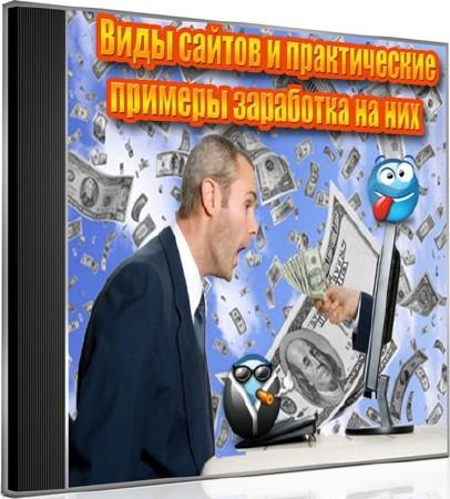 Виды сайтов и практические примеры заработка на них (2012) DVDRip