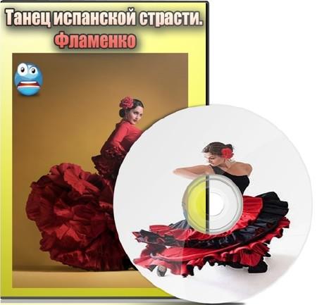 Танец испанской страсти. Фламенко (2012) DVDRip