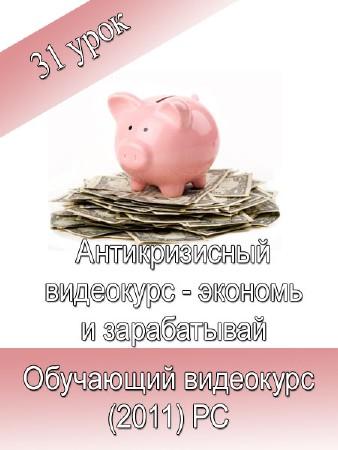 Антикризисный видеокурс - экономь и зарабатывай: Обучающий видеокурс (2011) PC