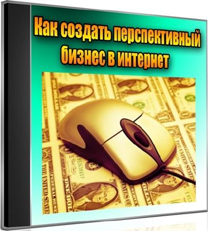 Как создать перспективный бизнес в интернет (2012) DVDRip