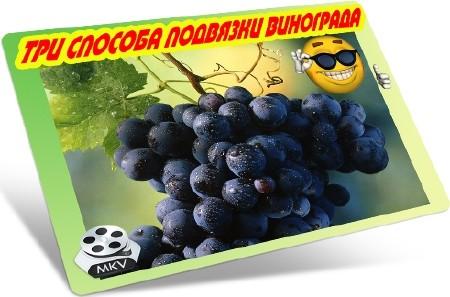 Три способа подвязки винограда (2012) DVDRip