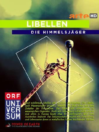 Небесные охотники. Мир стрекоз / Libellen - Die Himmelsjager (2010) HDTVRip