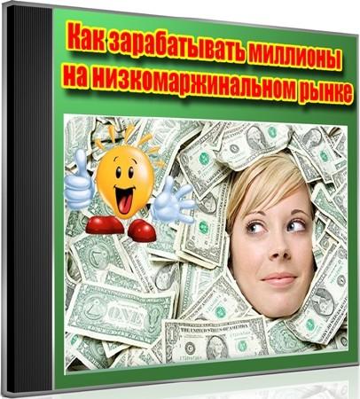 Как зарабатывать миллионы на низкомаржинальном рынке (2012) DVDRip