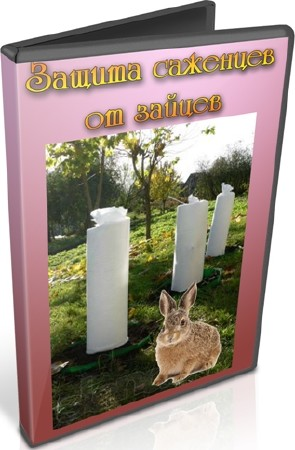 Защита саженцев от зайцев (2012) DVDRip