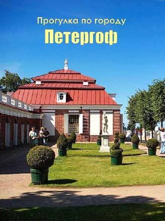 Прогулка по городу Петергоф (2012) DVB