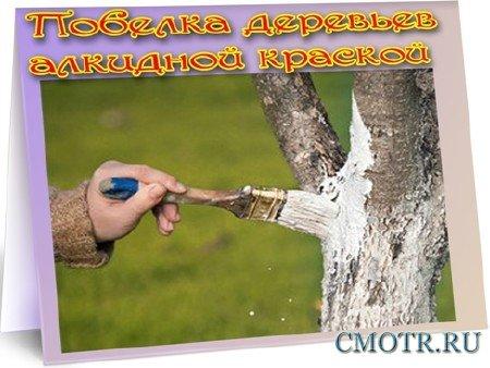 Побелка деревьев алкидной краской (2012) DVDRip