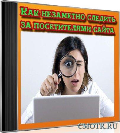 Как незаметно следить за посетителями сайта (2012) DVDRip