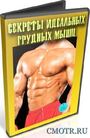 Секреты идеальных грудных мышц (2012) DVDRip