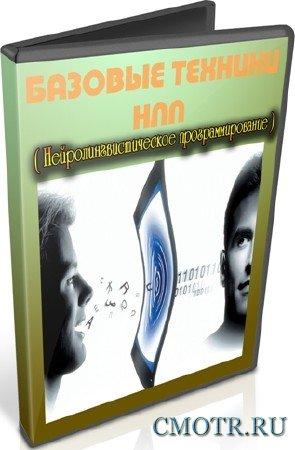 Базовые техники НЛП (2012) DVDRip