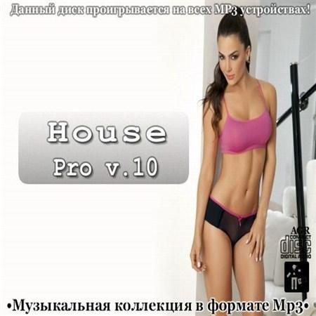 VA - House Pro V.10 (2013)