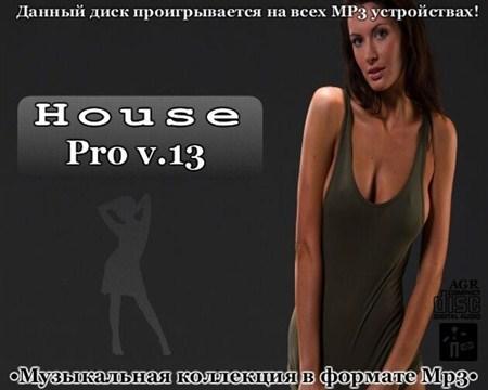 House Pro V.13 (2013)