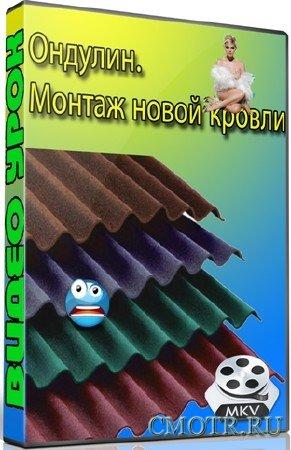Ондулин. Монтаж новой кровли (2012) DVDRip