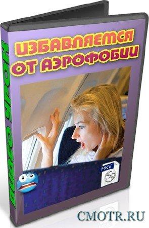 Избавляемся от аэрофобии (2012) DVDRip