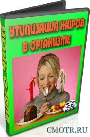 Утилизация жиров в организме (2012) DVDRip