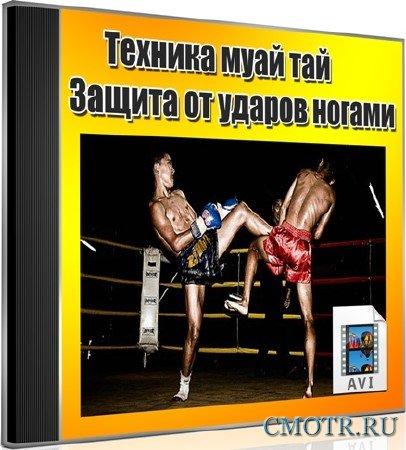 Техника муай тай. Защита от ударов ногами (2012) DVDRip