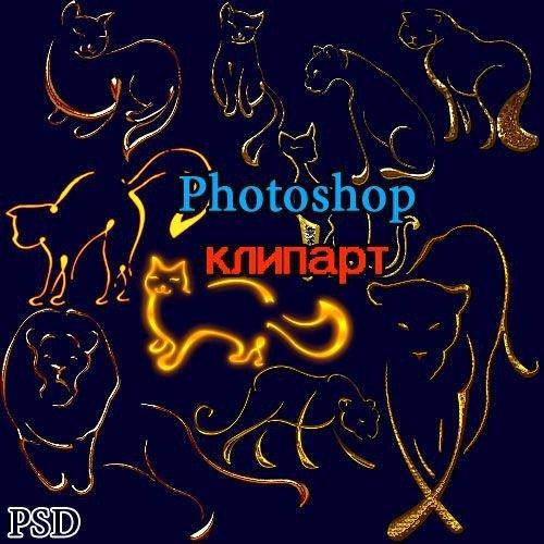 Photoshop украшения Кошки  PSD
