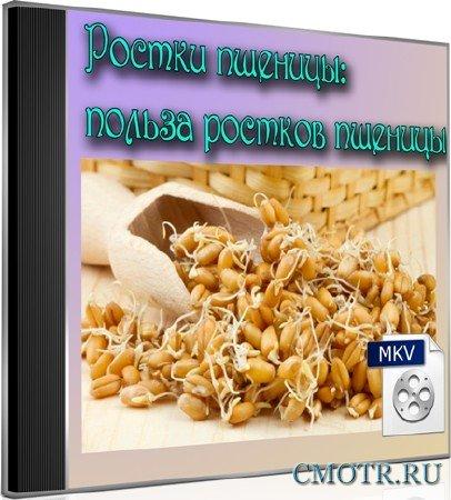 Ростки пшеницы: польза ростков пшеницы (2012) DVDRip
