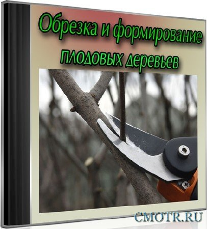 Обрезка и формирование плодовых деревьев (2013) DVDRip