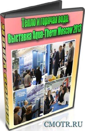 Тепло и горячая вода. Выставка Aqua-Therm Moscow 2013 (2013) DVDRip