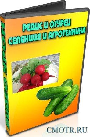 Редис и огурец. Селекция и агротехника (2013) DVDRip