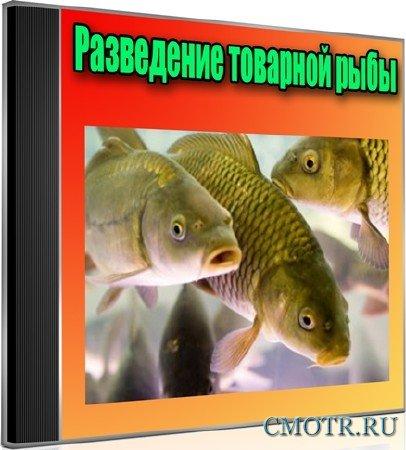 Разведение товарной рыбы (2012) DVDRip