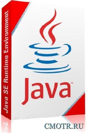 Java Runtime Environment 6.0 Update 43