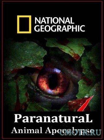 Паранормальное. Апокалипсис животных / Paranatural. Animal Apocalypse (2012) SATRip