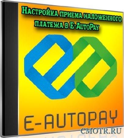 Настройка приёма наложенного платежа в E-AutoPay (2012) DVDRip