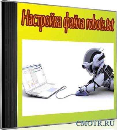Настройка файла robots.txt (2012) DVDRip