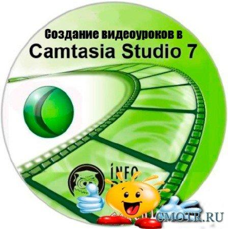 Запись видеоуроков в Camtasia Studio 7 (2012) DVDRip