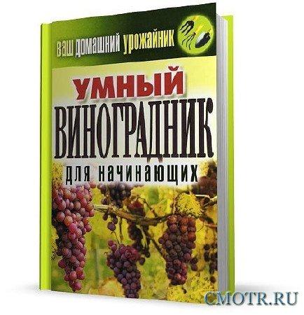 Умный виноградник для начинающих