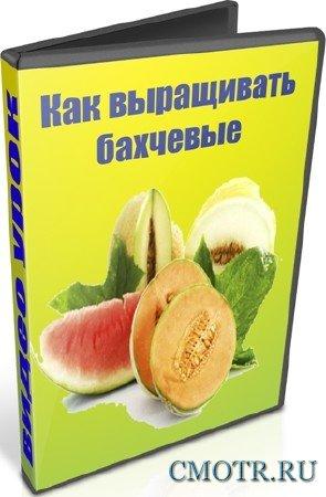 Как выращивать бахчевые (2012) DVDRip