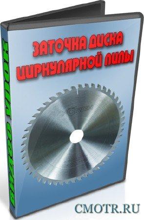 Заточка диска циркулярной пилы (2012) DVDRip
