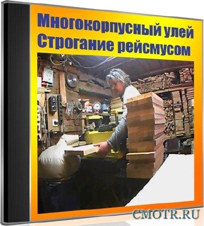 Многокорпусный улей. Строгание рейсмусом (2012) DVDRip