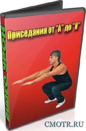 Приседания от А до Я (2013) DVDRip