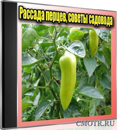 Рассада перцев, советы садовода (2012) DVDRip
