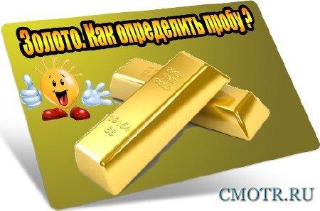 Золото. Как определить пробу (2012) DVDRip