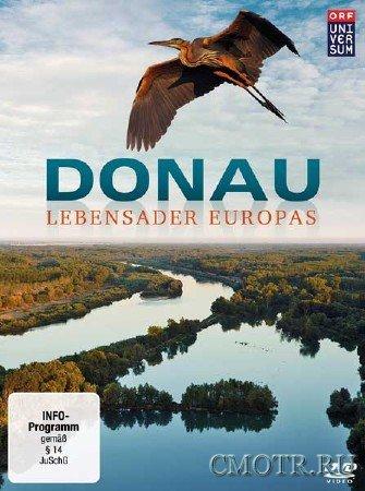 Дунай - Европейская Амазонка (2 серии из 2) / Danube: Europes Amazon (2012) SATRip
