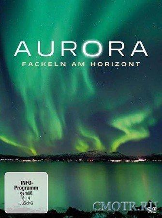 Полярное сияние - Небесный огонь / Terra Mater: Aurora - Fackeln am Firmament (2012) SATRip