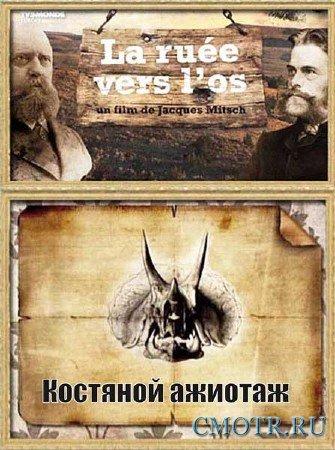 Костяной ажиотаж / La Ruee vers l'os (2012) DVB
