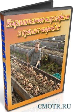 Выращивание картофеля в грядах-коробах (2012) DVDRip