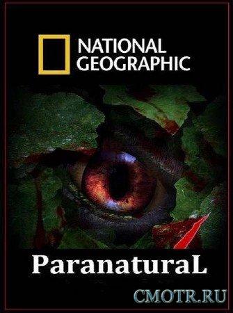 Паранормальное. Экстрасенсорные способности / Paranatural. Psychic powers (2012) SATRip
